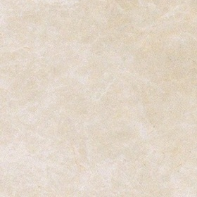 Elite Floor White Tozzetto 10,5*10,5