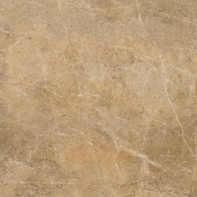 Elite Floor Jewel Gold - 45*45, 44*44, 60*60, 59*59  #12611